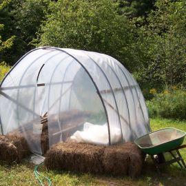 Colo jardinier en herbe